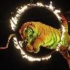 Цирки в Ульяновске
